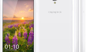 Flash Stock Rom onOppo Neo 3 using Recovery Mode
