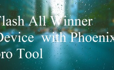 Flash All Winner Device with Phoenix pro Tool