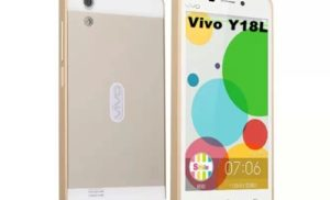 Flash Stock Rom on Vivo Y18L using Recovery Mode
